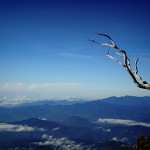 mt. kinabalu (leg 4): conquering pain