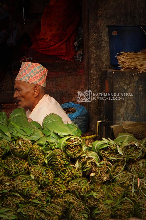 nepal_0007fliptravels