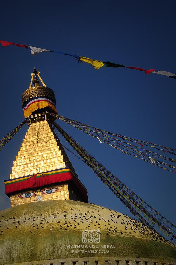 nepal_354fliptravels