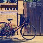 the day i gave up biking