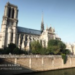 notre-dame de paris: the pop culture, the history, the legacy.